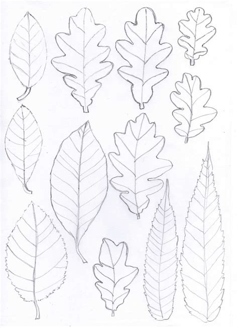 candlestick pattern for lupin leaves graphic art ideas pinterest yarns leaf