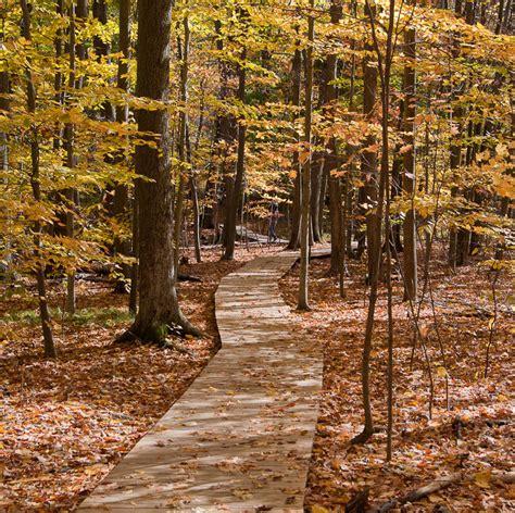friendly parks near me wood hollow metro park summit metro parks parks near me