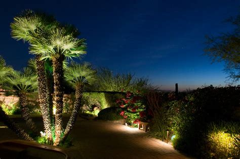 Landscape Tree Lighting Palm Tree Lighting Outdoor Lighting Perspectives