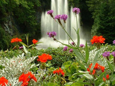 ver jardines bell 237 simas imagenes del jardin butchart en canad 225
