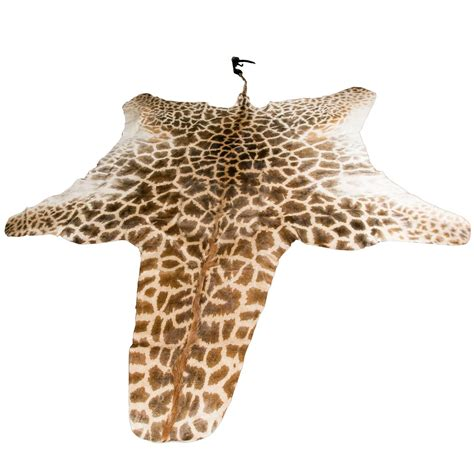 authentic and beautiful giraffe skin rug for sale