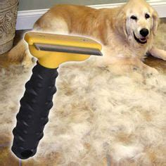 golden retriever shedding solutions furminator deshedding tool innovative grooming tool for and haired dogs