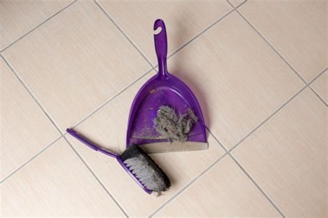 how to clean hair off bathroom floor how to clean hair off a bathroom floor thriftyfun