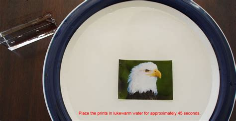 printable clear sticker paper singapore 10 sheets inkjet clear waterslide transfer decal paper ebay