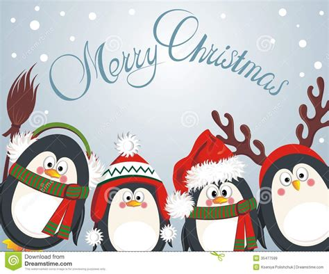 merry christmas cute penguins royalty  stock images image