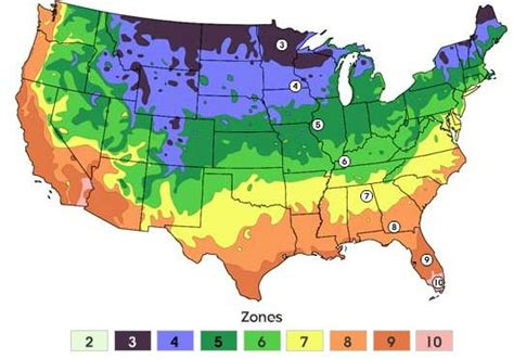 garden zone map if you question the numbers ask the plants simple climate