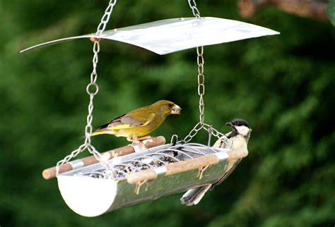 Nourrir Oiseaux Jardin by Nourrir Les Oiseaux Au Jardin Jardissimo