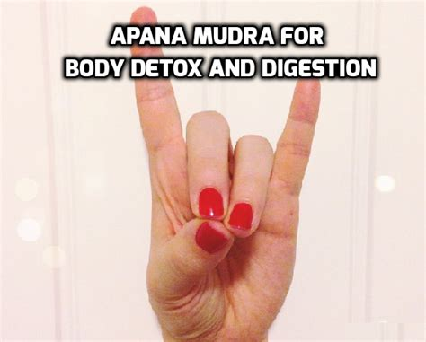 Detox Mudra Benefits by Apana Mudra Helps In Detox And Digestion Health Melody