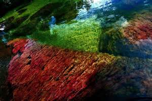 river of 5 colors the river of five colors columbia aquatic