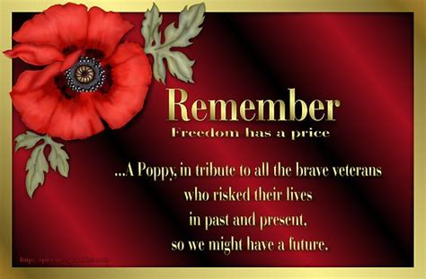 quot remember veterans poppy quot by spicetree redbubble