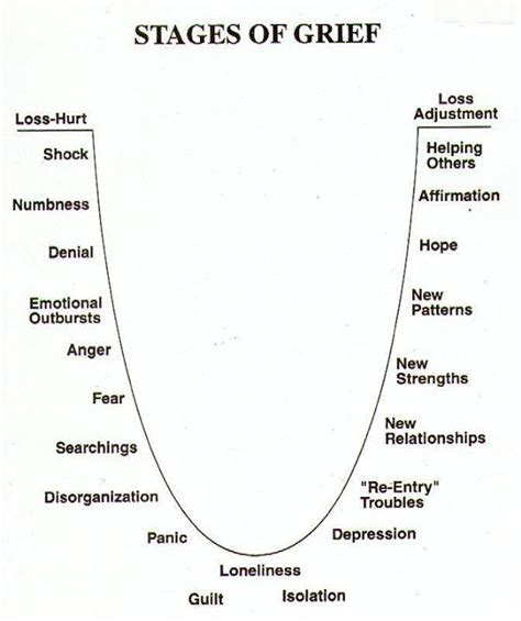 cycle of grief diagram best 25 7 stages of grief ideas on another