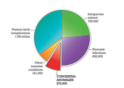 born problems definition who congenital anomalies