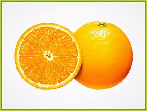 imagenes de frutas y verduras para decorar imagenes infantiles de frutas para decorar un cumple