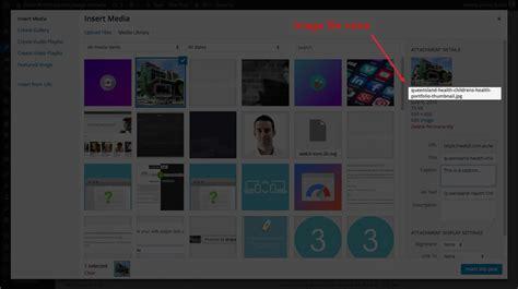 website section names do s don ts of website images web3 brisbane web design