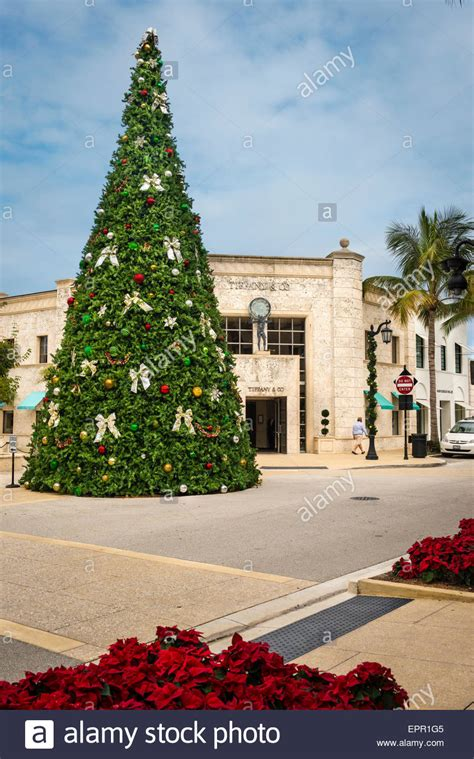 florida palm beach worth avenue christmas tree by tiffany