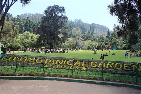 ooty botanical gardens file botanical garden in ooty tamil nadu jpg