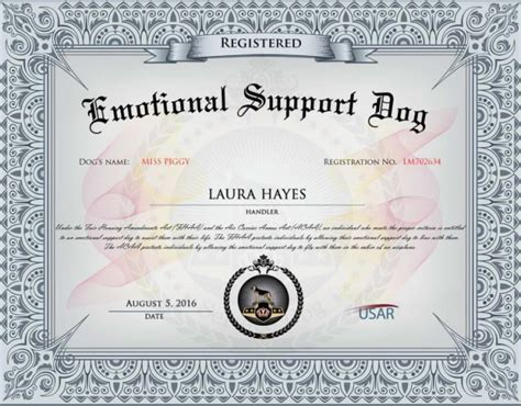 emotional support certificate don t the system to dine with your pup