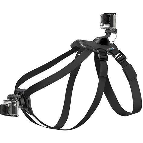 gopro harness gopro fetch harness at moosejaw