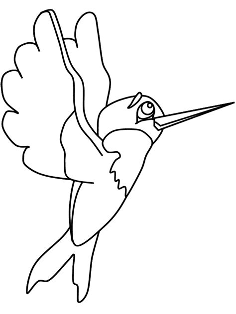 coloring pages of animals and birds birds hummingbird2 animals coloring pages coloring book