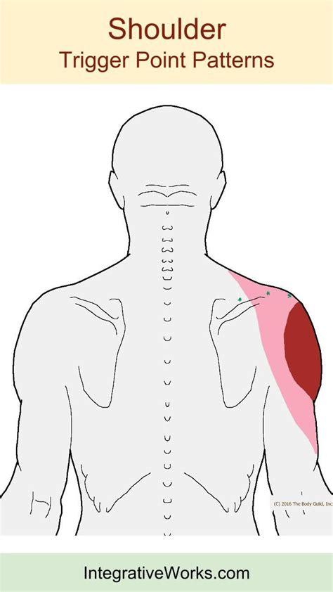 frozen shoulder hot shower 28 best neck trigger point pain images on pinterest