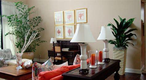 plantas de interior para salon las mejores plantas decorativas para el sal 243 n