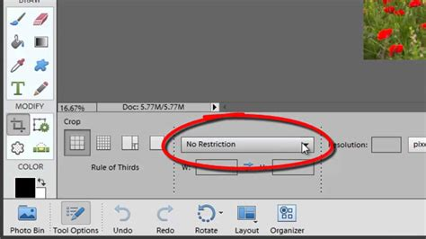 reset crop tool photoshop photoshop elements using the crop tool windows youtube