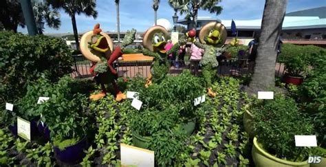 disney flower and garden festival 2017 epcot flower and garden festival flower garden epcot