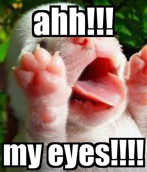 My Eyes Meme - image gallery my eyes