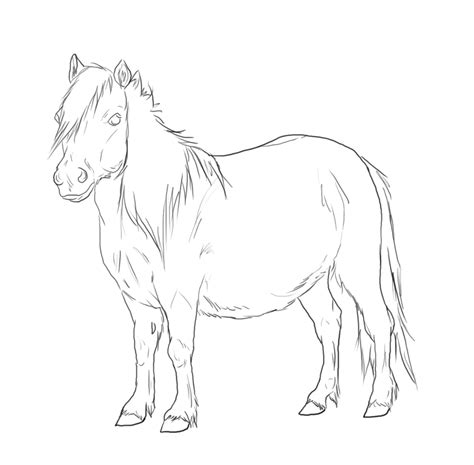 shetland pony coloring pages shetland pony drawing sketch coloring page