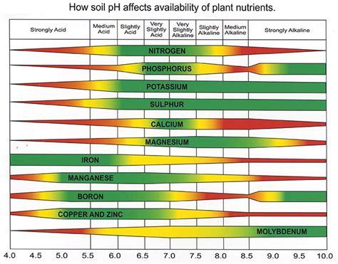 soil ph chart bing images