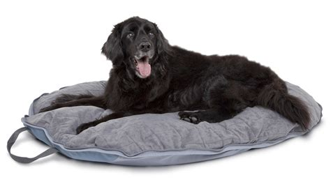 travel dog bed classic accessories dogabout pet folding travel bed pet