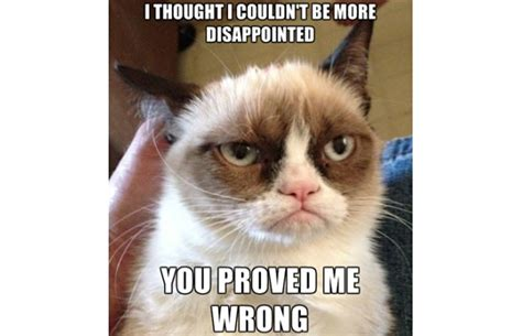 Create A Grumpy Cat Meme - create grumpy cat meme 28 images grumpy cat reverse