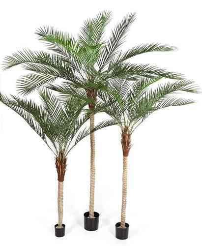 kunstpflanzen wetterfest kunstpalmen kunstpflanze de