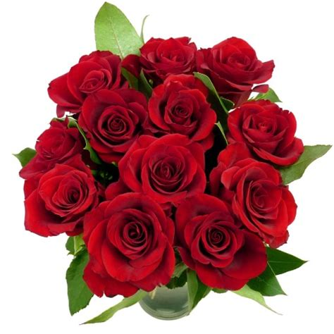 valentines day roses delivery the hub s day 163 5 12 roses free