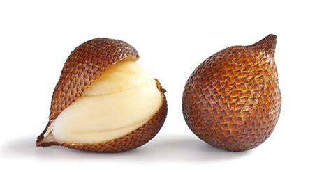 Pembuat Buah Berkualitas rahasia cara memilih buah salak berkualitas rumah musyx
