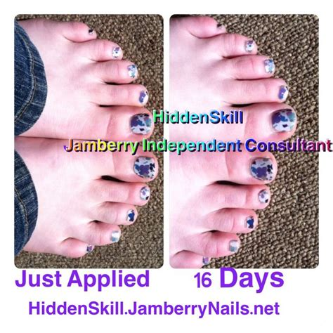 jamberry with boston terrier 1000 images about hiddenskill jamberry nails independent