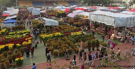 market hong kong new year flower market new year hong kong 2017 flower