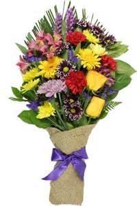 Carnations Wedding Flowers - nectar flower flower delivery cross canada