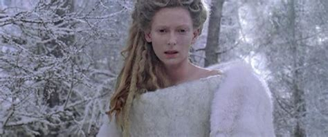 The Chronicles Of Narnia The The Witch And Wardrobe by Picture Of The Chronicles Of Narnia The The Witch