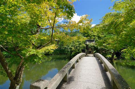 giardini giapponesi immagini giardini giapponesi fotografia stock immagine di lago