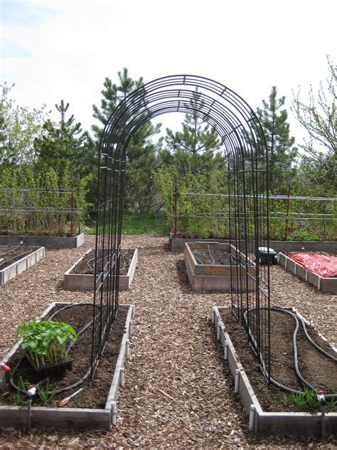 better homes and gardens trellis juniper pole bean trellis idea susan s in the garden