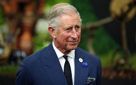 prince charles documentary about prince charles postponed after royal
