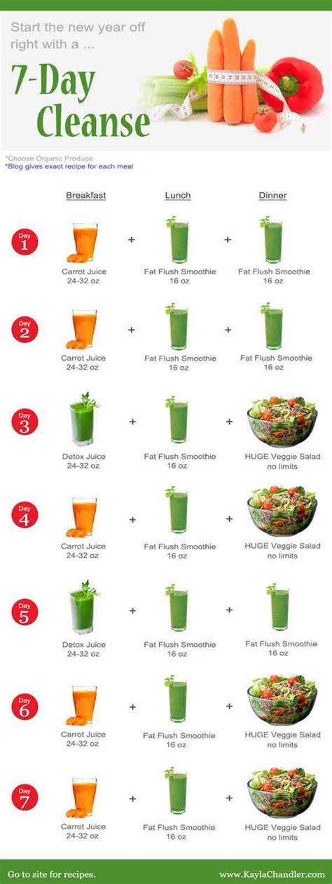 Detox Plan by Juicing Recipes For Detoxing And Weight Loss Modwedding