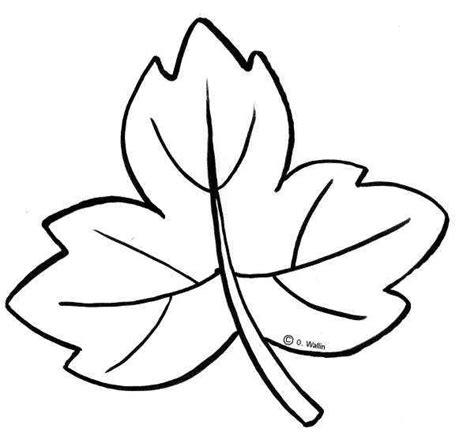imagenes para colorear hojas dibujos de hojas de oto 241 o buscar con google moldes