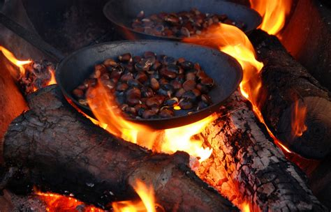 Roasting Chestnuts In Fireplace by Roasting Chestnuts In The Limousin