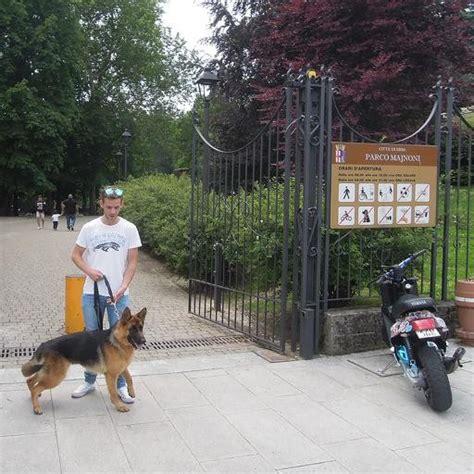 divieto d ingresso ai cani erba il parco majnoni apre ai cani cancellato il divieto