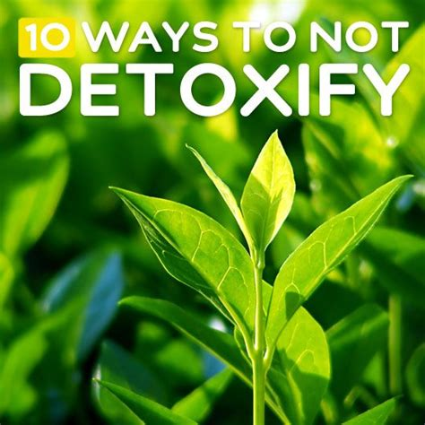 Detoxing Your Thought by 11 Amazing 10 Ways To Not Detoxify Your How To Lose