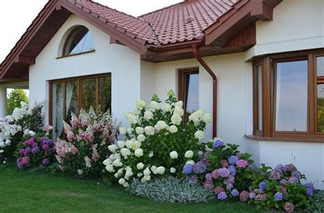 Landscape Design Using A Picture Of My House Landscaping With Hydrangeas 15 Garden Design Ideas