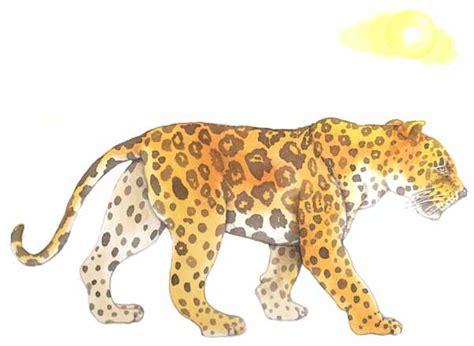 imagenes de un jaguar en caricatura dibujo de jaguar imagui