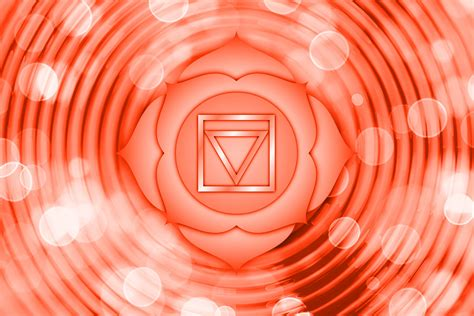 root chakra description associations  functions